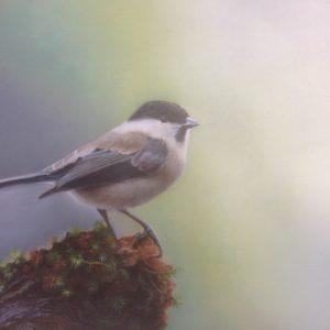 Vogeltje wat zing je vroeg, Prijs op aanvraag.